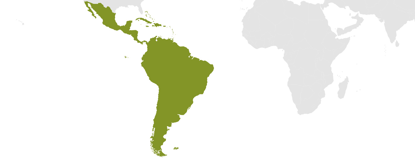 Where we operate: Latin America and Caribbean map
